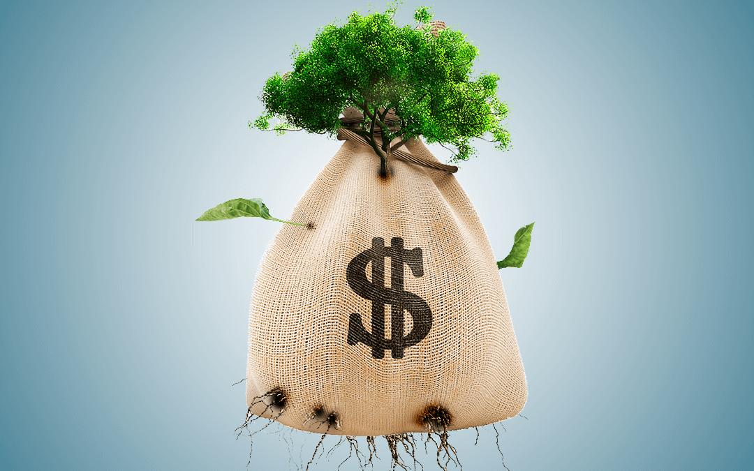La agroecología solo podrá expandirse superando el capitalismo
