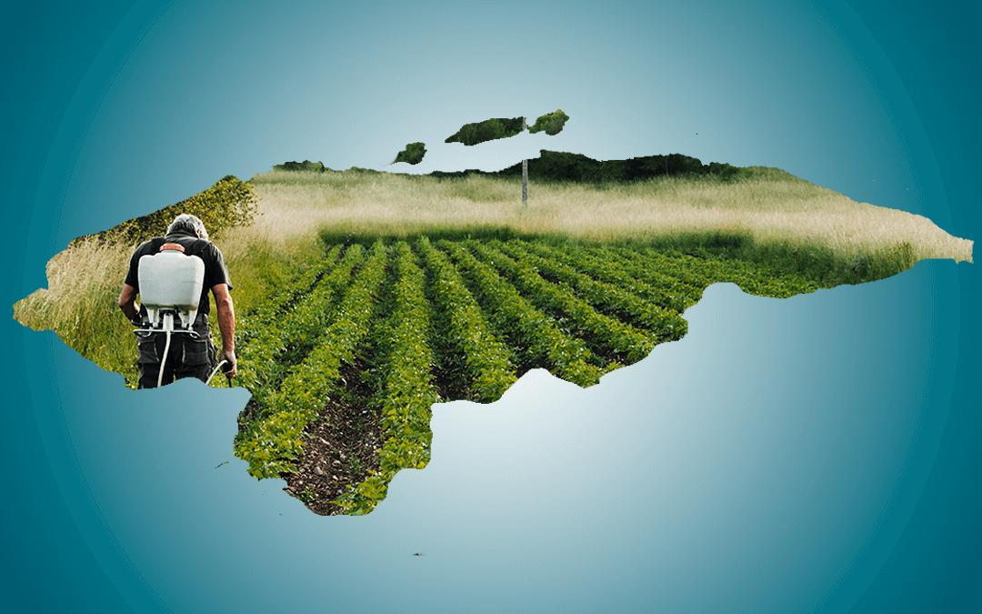 Pronunciamiento sobre las medidas de gobierno y la Soberanía Alimentaria
