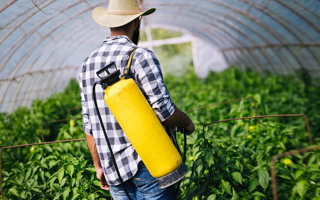 ¿Biofertilizantes y bioplaguicidas para la transición agroecológica?