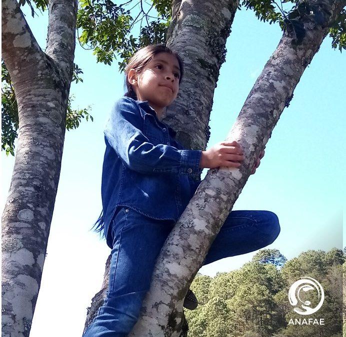 La niñez tiene derecho a un ambiente sano, para un desarrollo digno.